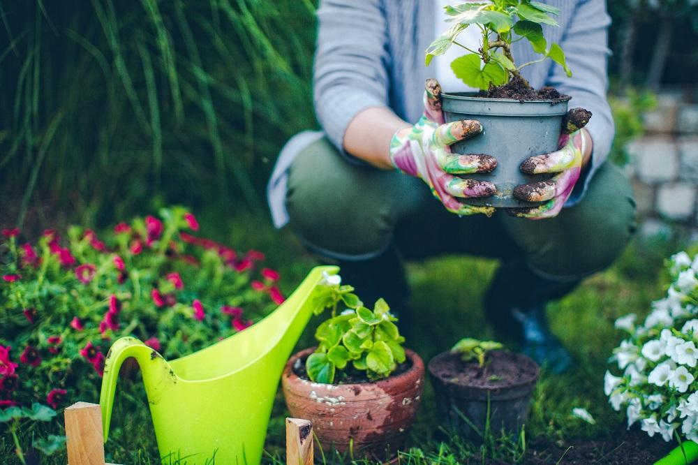 Gartenarbeit im Ruhestand