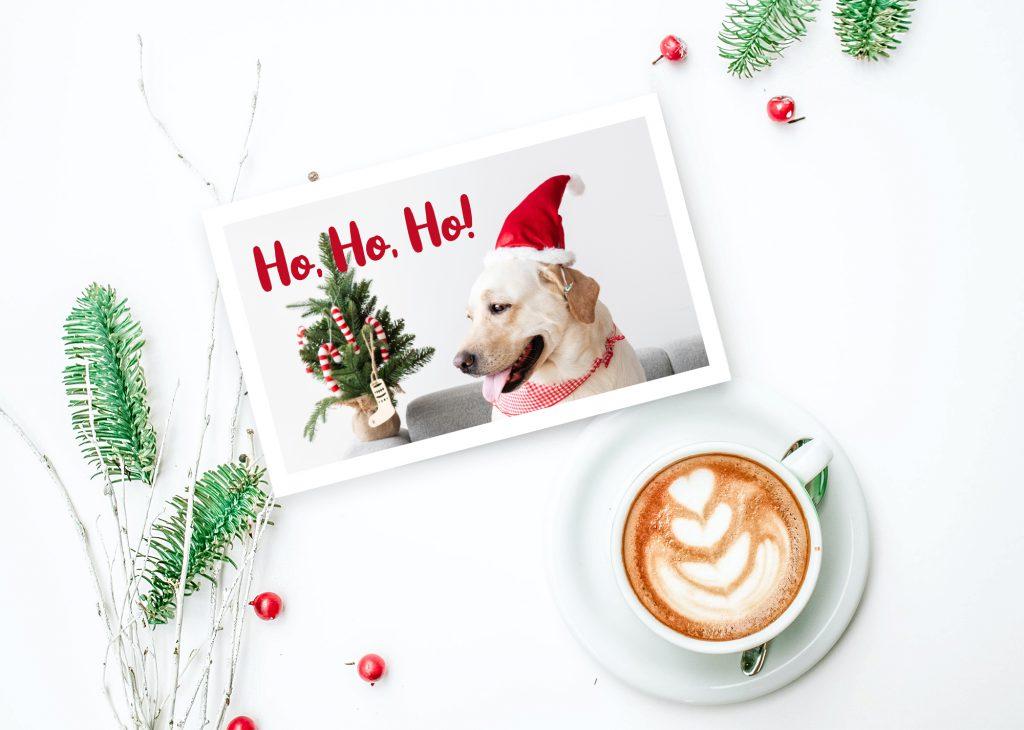 Selbst gestaltete Weihnachtskarte mit Hundefoto.