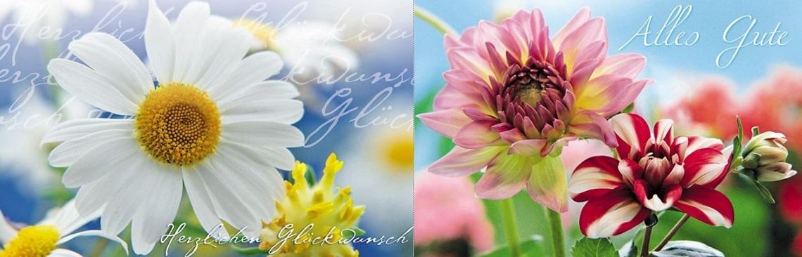 """Zwei Glückwunschkarten aus der Kategorie """"Blumengrüße"""""""
